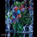 dremo06_botanical_key