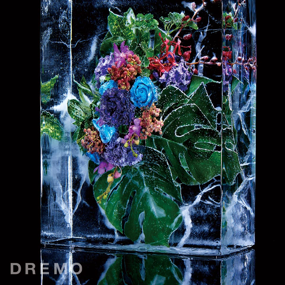 dremo06_botanical_key